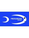 Prosargos Team